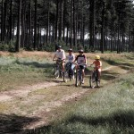 Cycling-in-Thetford-Forest